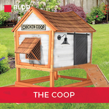 The Coop 2021 Playhouse Design